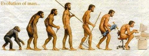 evoluutio